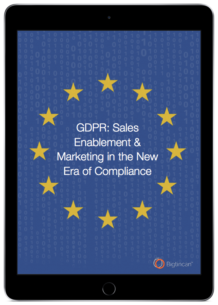 GDPR ebook ss-1.png